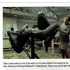 art times nov 2008, dylan lewis, stellenbosch sculpture tour,