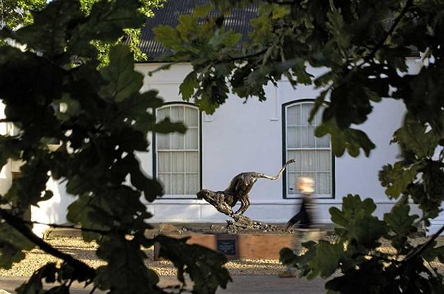 gallery, dylan lewis,running cheetah, stellenbosch gymnasium,