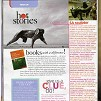 fair lady magazine - november 2008, dylan lewis, press, articles, stellenbosch, sculpture, exhibition,