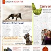 mango juice in flight magazine - october 2008, dylan lewis, sculptures, stellenbosch, exhibition,