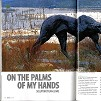 sawubona in flight magazine - january 2009, dylan lewis, press, article, stellenbosch, exhibition, sculptures, bronze,